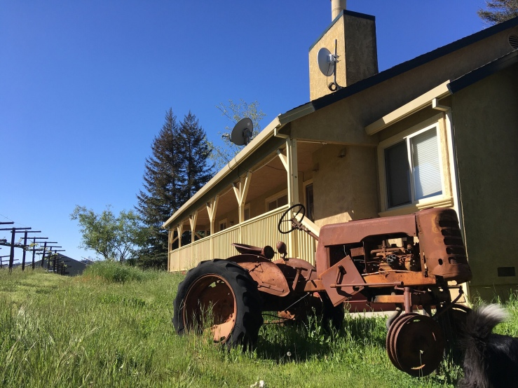 This old tractor was set up at a lawn ornament by a previous owner. I just love it! We also have a few other antique farm pieces around, some of them we can't even recognize.